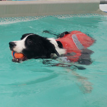 Kiera used hydrotherapy to recover from Achilles tendon tears